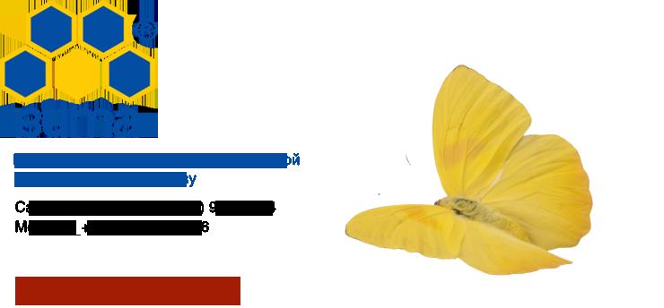 Ассоциация вита центры похудения по семенову отзывы